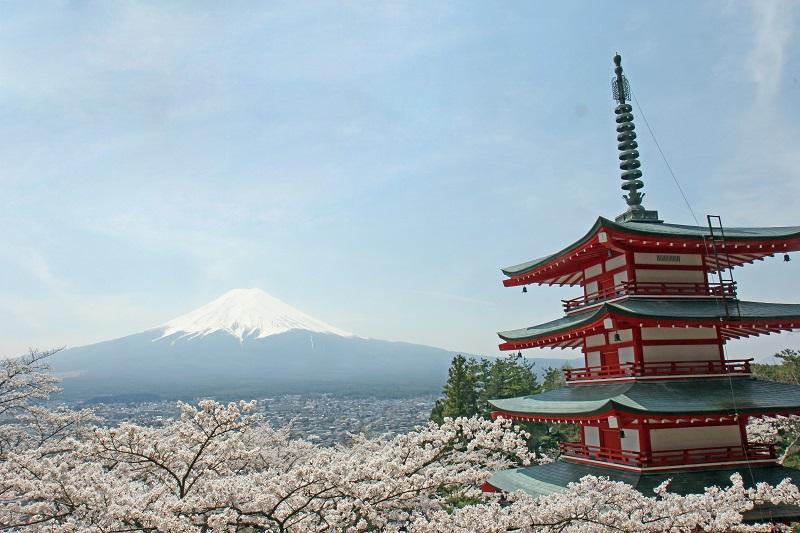 新倉浅間神社からの富士山と桜